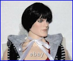 Dark Soul NRFB Doll Heroic body 17 Tonner Sinister Circus Mint